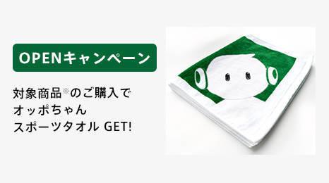 f:id:Azusa_Hirano:20201111053759j:plain