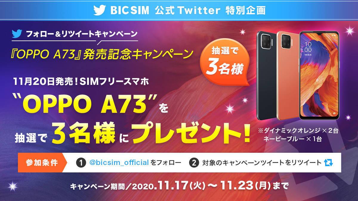 f:id:Azusa_Hirano:20201117130617j:plain