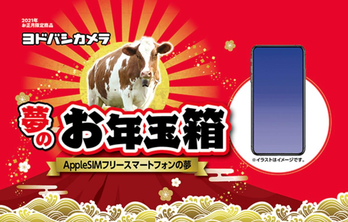 f:id:Azusa_Hirano:20201203054931p:plain