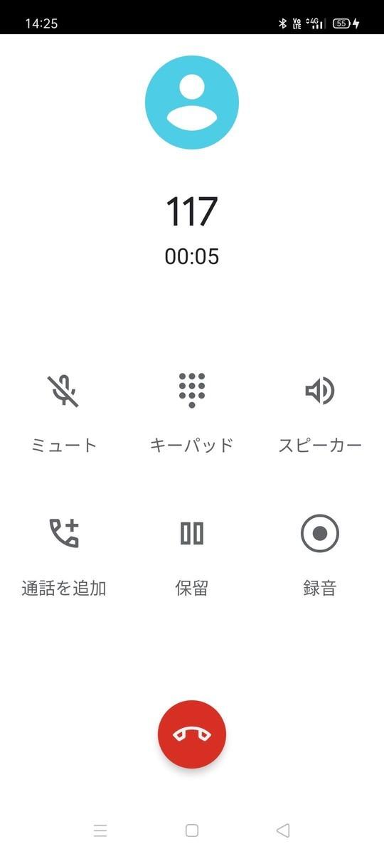 f:id:Azusa_Hirano:20210406150909j:plain