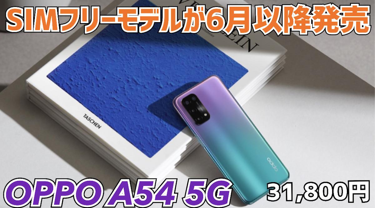 f:id:Azusa_Hirano:20210526110018j:plain