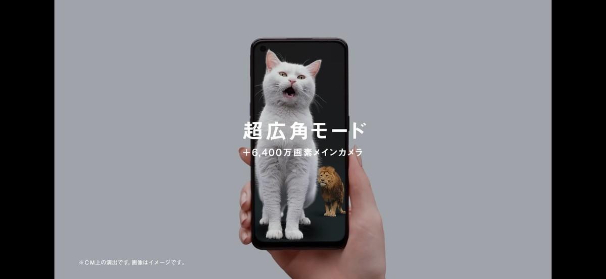f:id:Azusa_Hirano:20210605215252j:plain