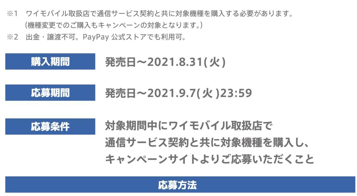 f:id:Azusa_Hirano:20210607070757j:plain