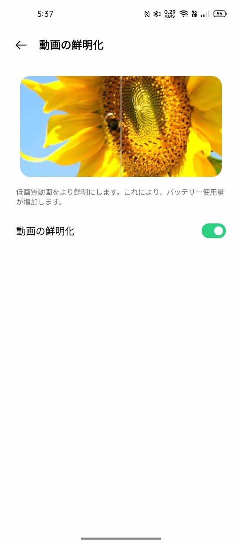 f:id:Azusa_Hirano:20210818053920j:plain