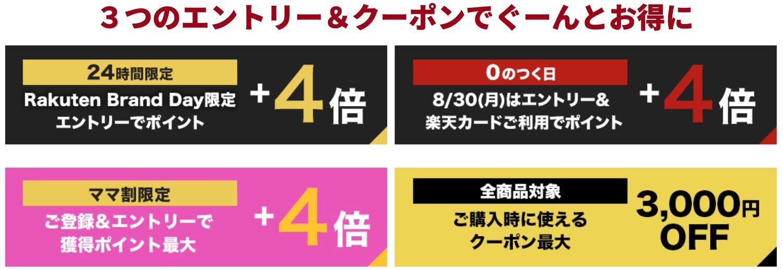 f:id:Azusa_Hirano:20210829160402j:plain