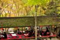 京都新聞写真コンテスト 「紅葉見物」