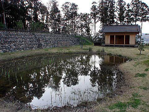 伝秩父曲輪の庭園と石積土塁