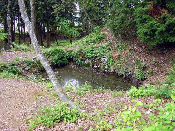 ■御馬屋(おうまや)跡の馬洗池(うまあらいいけ)