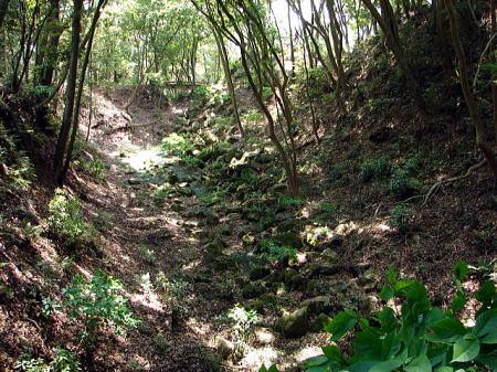 岩国城本丸下の空堀