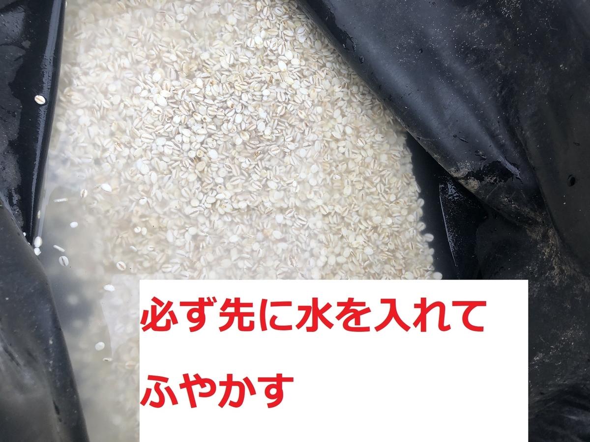 f:id:BNR34hiro:20200511153721j:plain