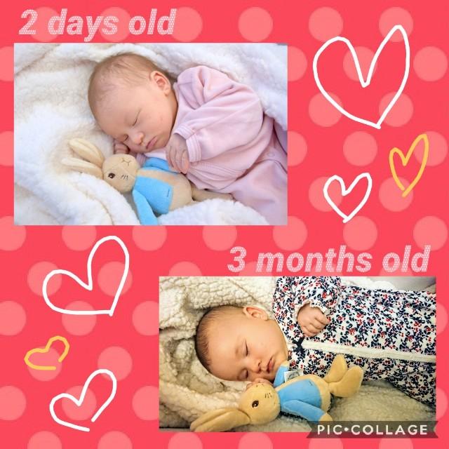 f:id:BabyFutoshi:20190201145521j:image