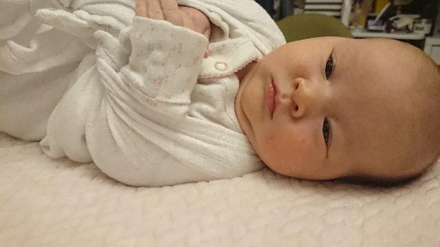 f:id:BabyFutoshi:20190209072621j:image