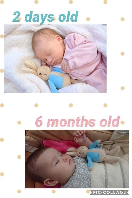 f:id:BabyFutoshi:20190426105333j:image