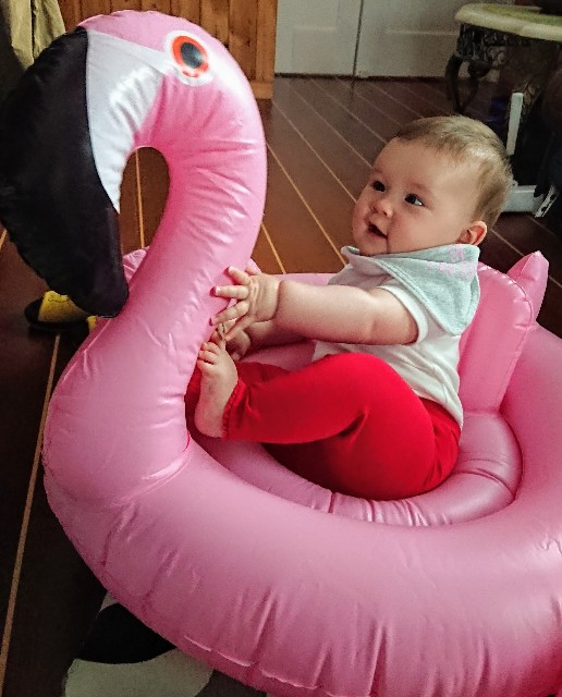 f:id:BabyFutoshi:20190426110718j:image