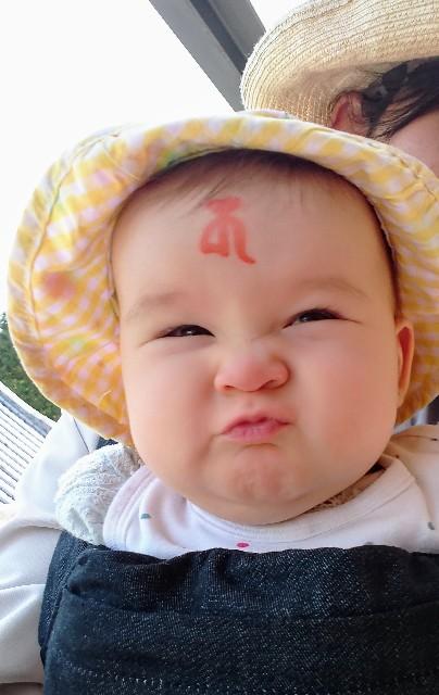 f:id:BabyFutoshi:20190507010151j:image