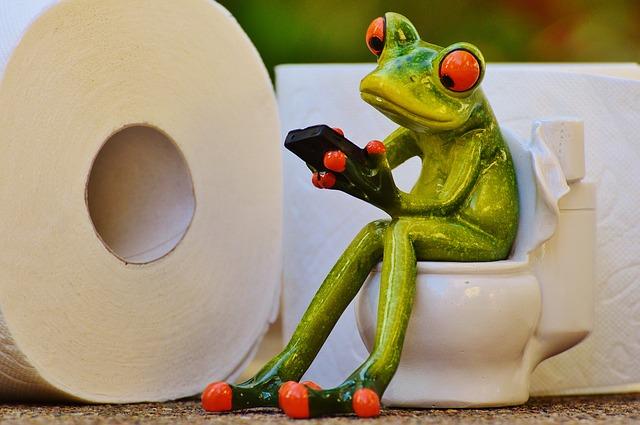 お風呂・トイレ掃除