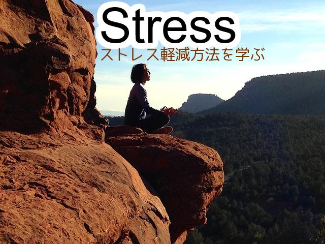 ストレス解消方法より、根本的な解決のためのストレス軽減方法を学ぶ