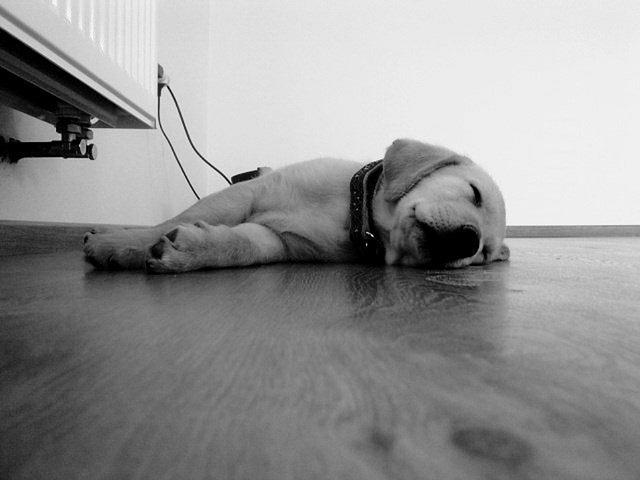 仕事終わりの夜にくる眠気の原因と簡単な対策