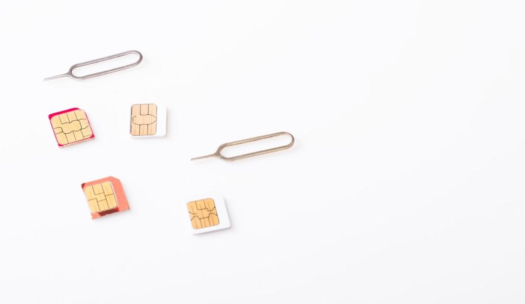格安SIMにして一ヵ月の容量を設定