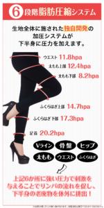 ビレッグの6段階脂肪圧縮システム