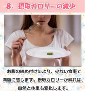 マジカルボディスリマーで食欲減少