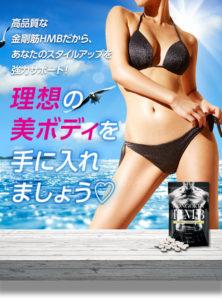 鳥が飛んでいる、青い海と空を背景に、黒いビキニを着ている細くスタイルの良い女性の体と、その前に置かれている、金剛筋ダイエットサプリメントの錠剤とパッケージの写真。