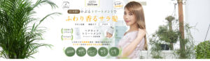 艶のある髪をしているタレントの住谷杏奈さんの写真と、プロデュースしているトリートメントの説明