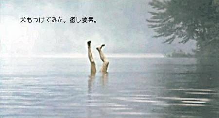 http://f.hatena.ne.jp/images/fotolife/B/Beirii/20070403/20070403202432.jpg