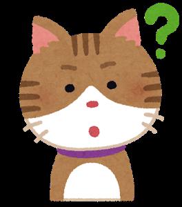 f:id:Berry-kinoko:20200917163941p:plain