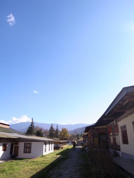 f:id:Bhutan_Tamako:20101203165929j:image