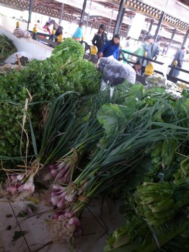f:id:Bhutan_Tamako:20110423200107j:image