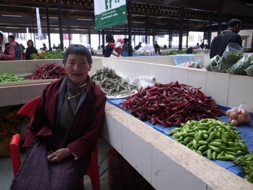 f:id:Bhutan_Tamako:20110423200410j:image