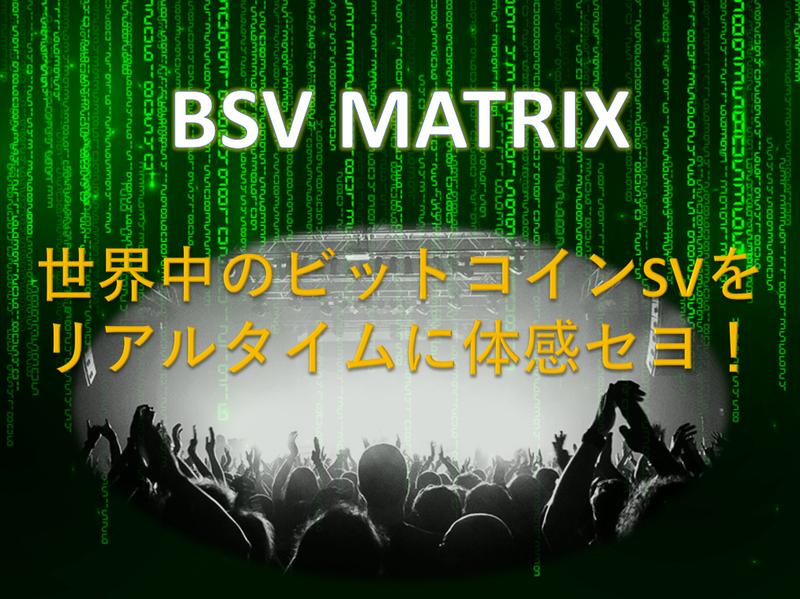 BSVMatrix
