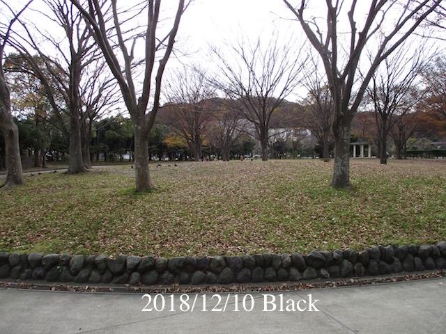 f:id:Black5:20181210130321j:plain
