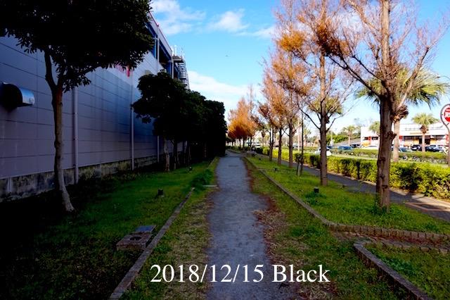 f:id:Black5:20181215123224j:plain