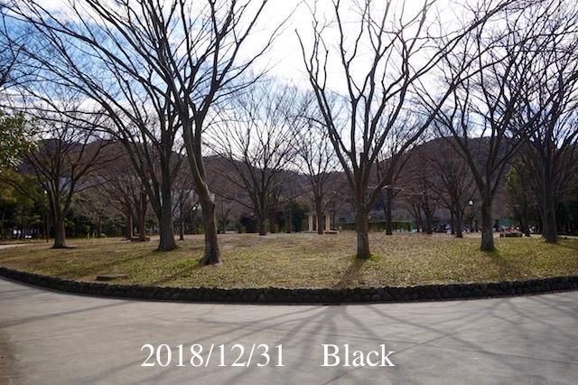 f:id:Black5:20181231164350j:plain
