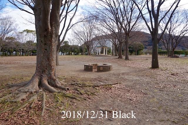 f:id:Black5:20181231182141j:plain