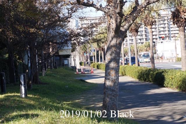 f:id:Black5:20190102180717j:plain