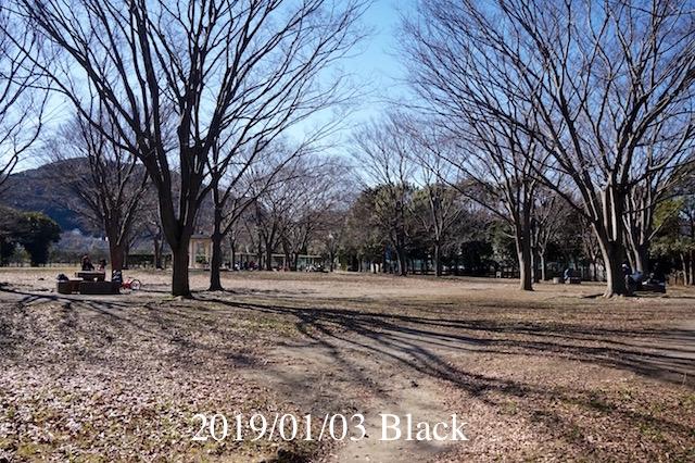 f:id:Black5:20190103143341j:plain