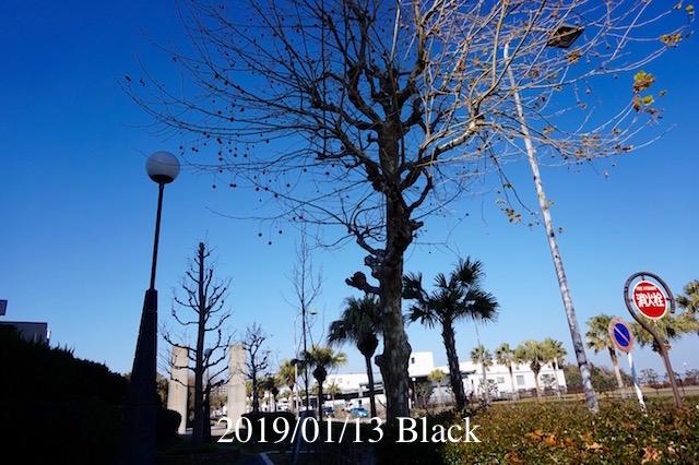 f:id:Black5:20190113145157j:plain