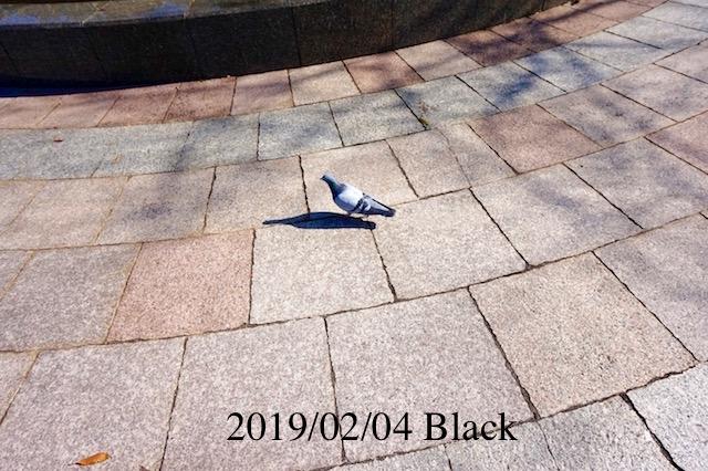 f:id:Black5:20190204170221j:plain