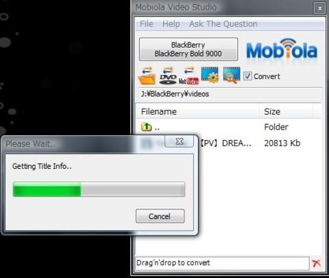 f:id:BlackBerryBold:20090327105923j:image:w320