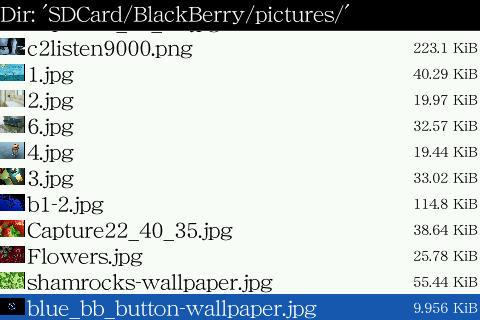 f:id:BlackBerryBold:20090422132923j:image