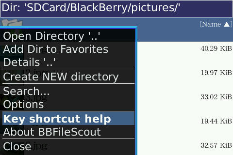 f:id:BlackBerryBold:20090522204934j:image