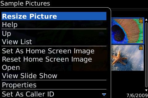 f:id:BlackBerryBold:20090615144833p:image