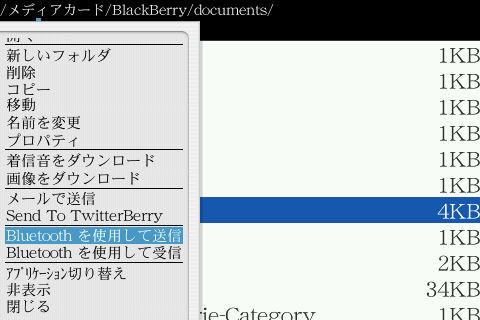 f:id:BlackBerryBold:20090629131012j:image