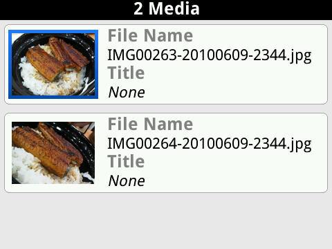 f:id:BlackBerryBold:20100615161052j:image