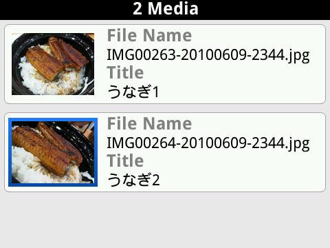 f:id:BlackBerryBold:20100615161805j:image