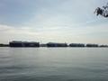NYK自動車船4隻