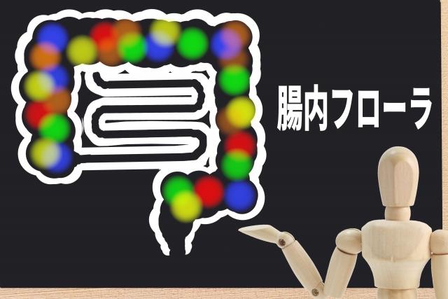 f:id:BloggerJIN:20210407070409j:plain